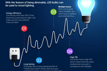Long-Lasting Life with High-Quality LED Light Bulb Infographic