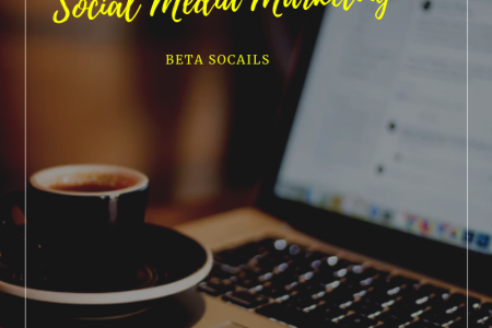 Looking Best Social Media Marketing Company in Nigeria? Infographic