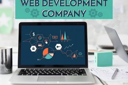 Looking for a Professional Web Design & Development Company? Infographic