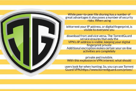 Looking For fully Functional Vpn!!! Infographic