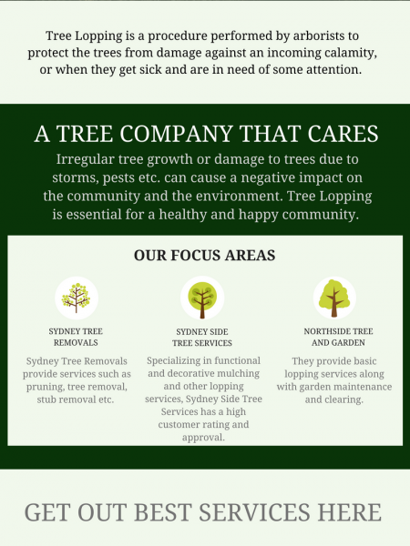 Looking For Tree Pruning Service in Sydney Infographic