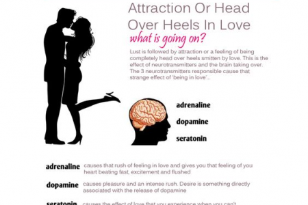 Love & Attraction - Why it's all in your head Infographic