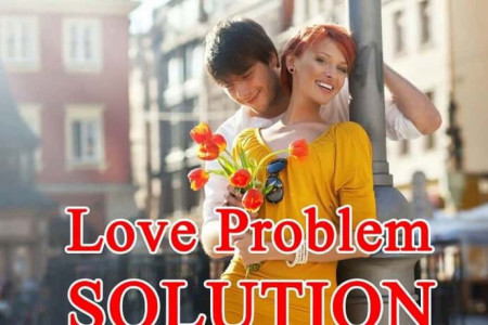 Love Problem Solution Astrologer Infographic