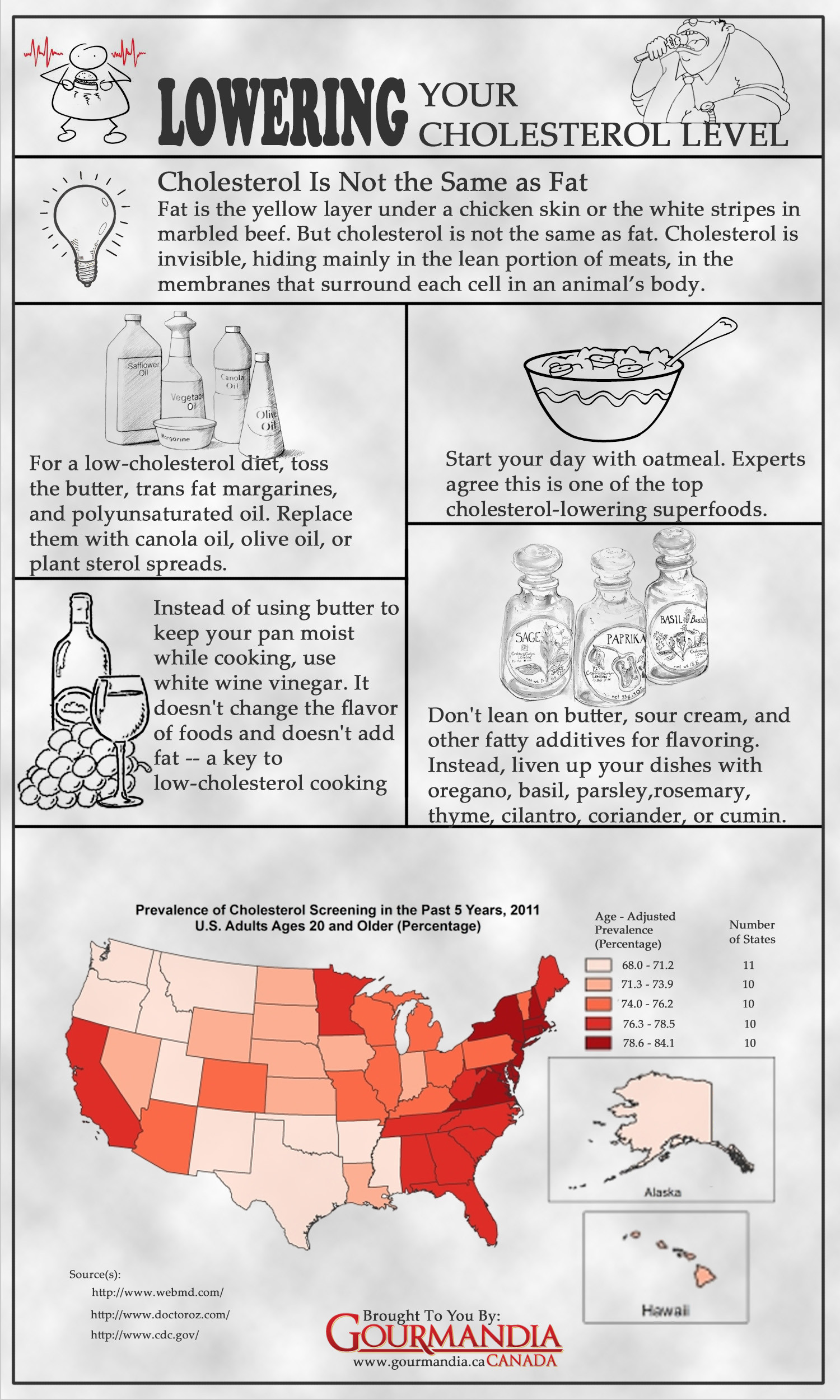 Lowering Cholesterol Level Infographic