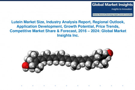 Lutein Market size, share & Forecast to 2024 Infographic