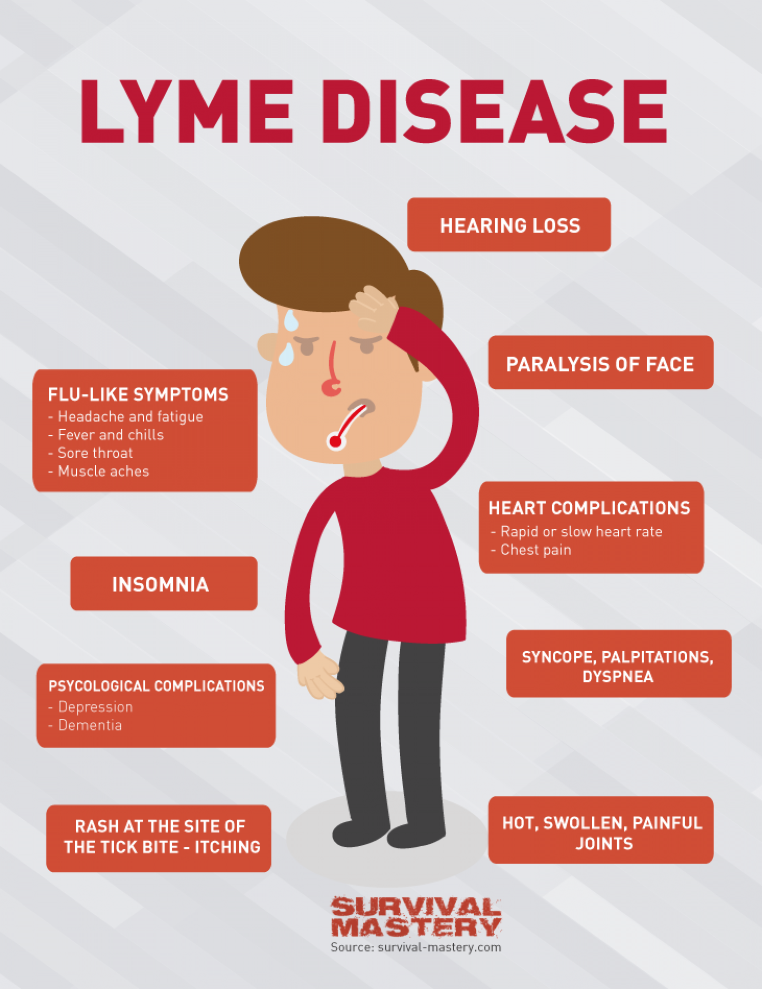 Lyme Disease Infographic Visual Ly
