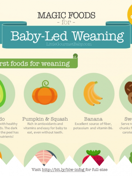 Magic List of Baby-Led Weaning Foods Infographic