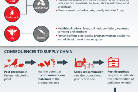 Maintaining an Effective Supply Chain Risk Management with Progressive Education Infographic