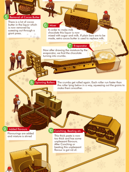 Making of Chocolate Bars Infographic