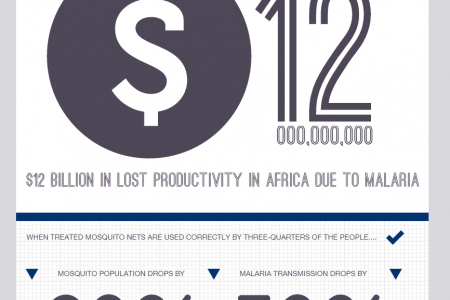 Malaria By Numbers Infographic
