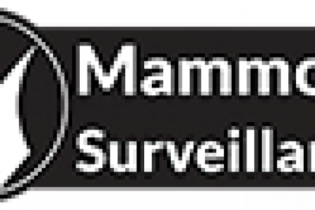 Mammoth Surveillance Camera Systems Infographic