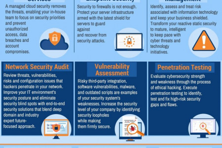 Managed Cyber Security Services Provider Infographic