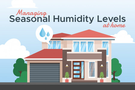 Managing Seasonal Humidity Levels at Home Infographic