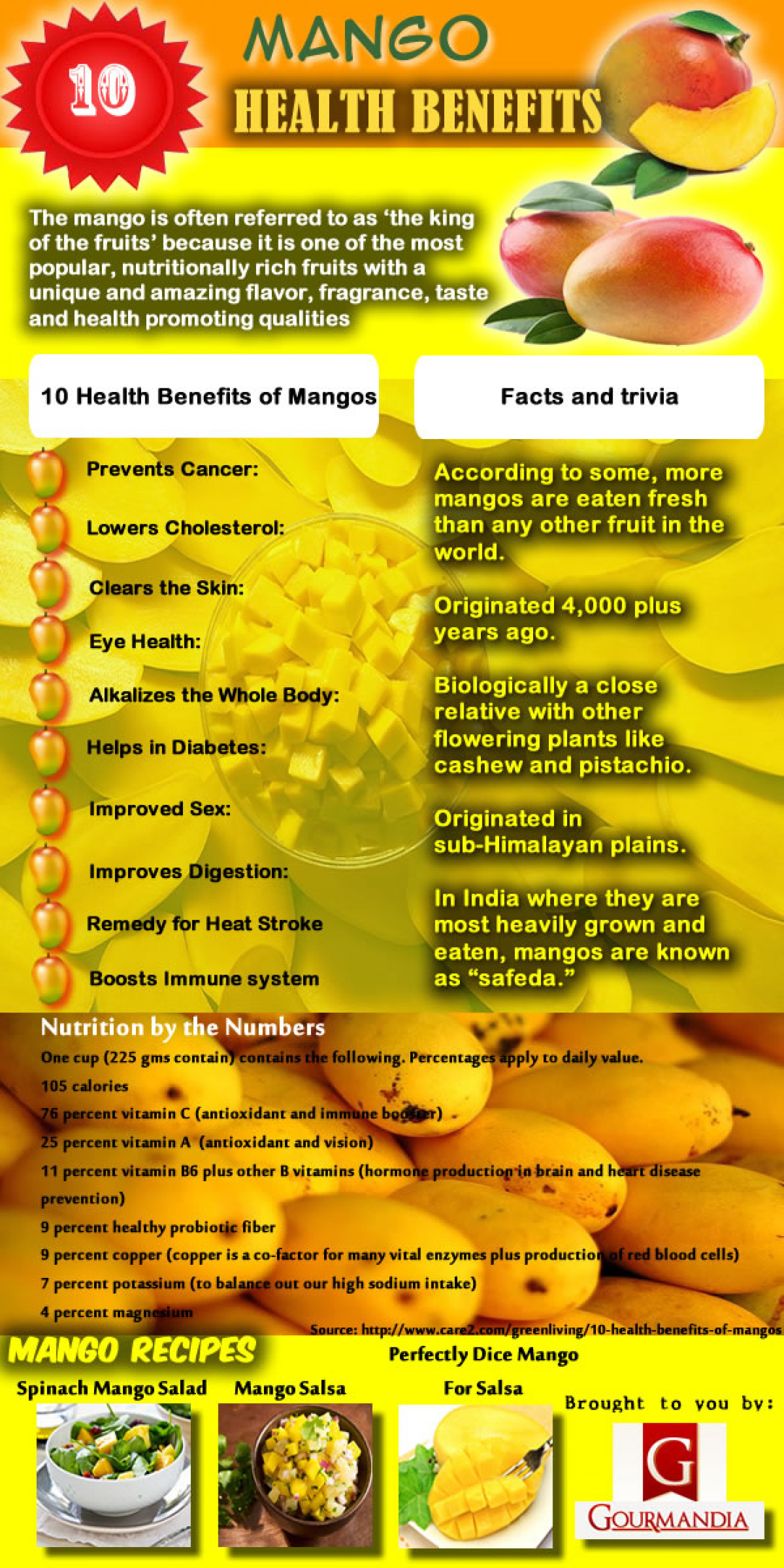 Mango Health Benefits Infographic