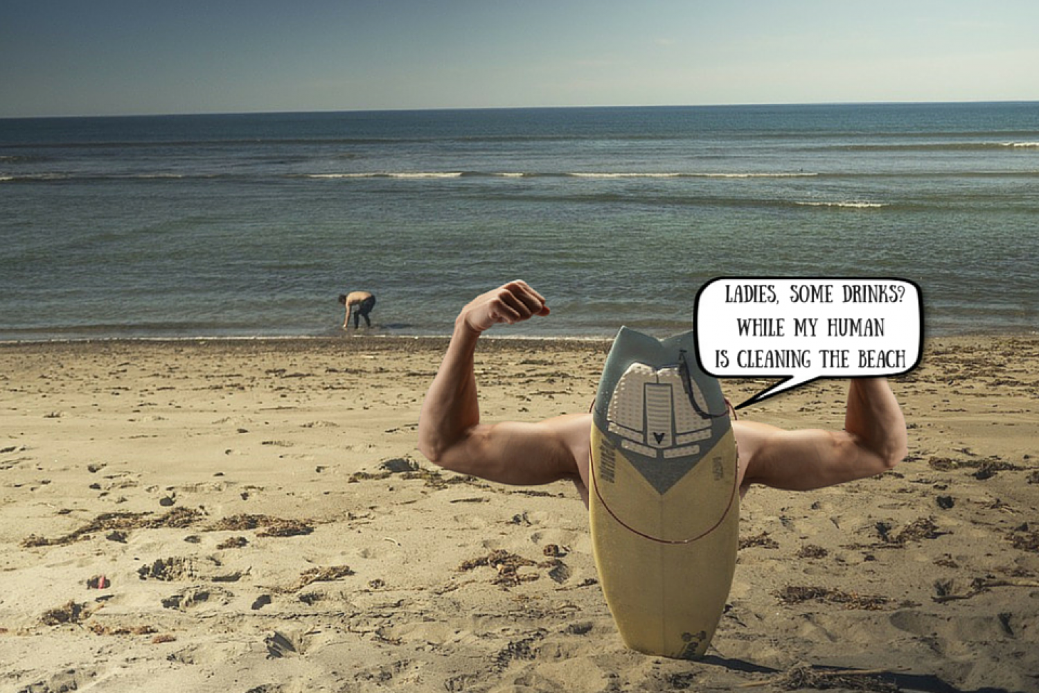 Manly Surf Infographic