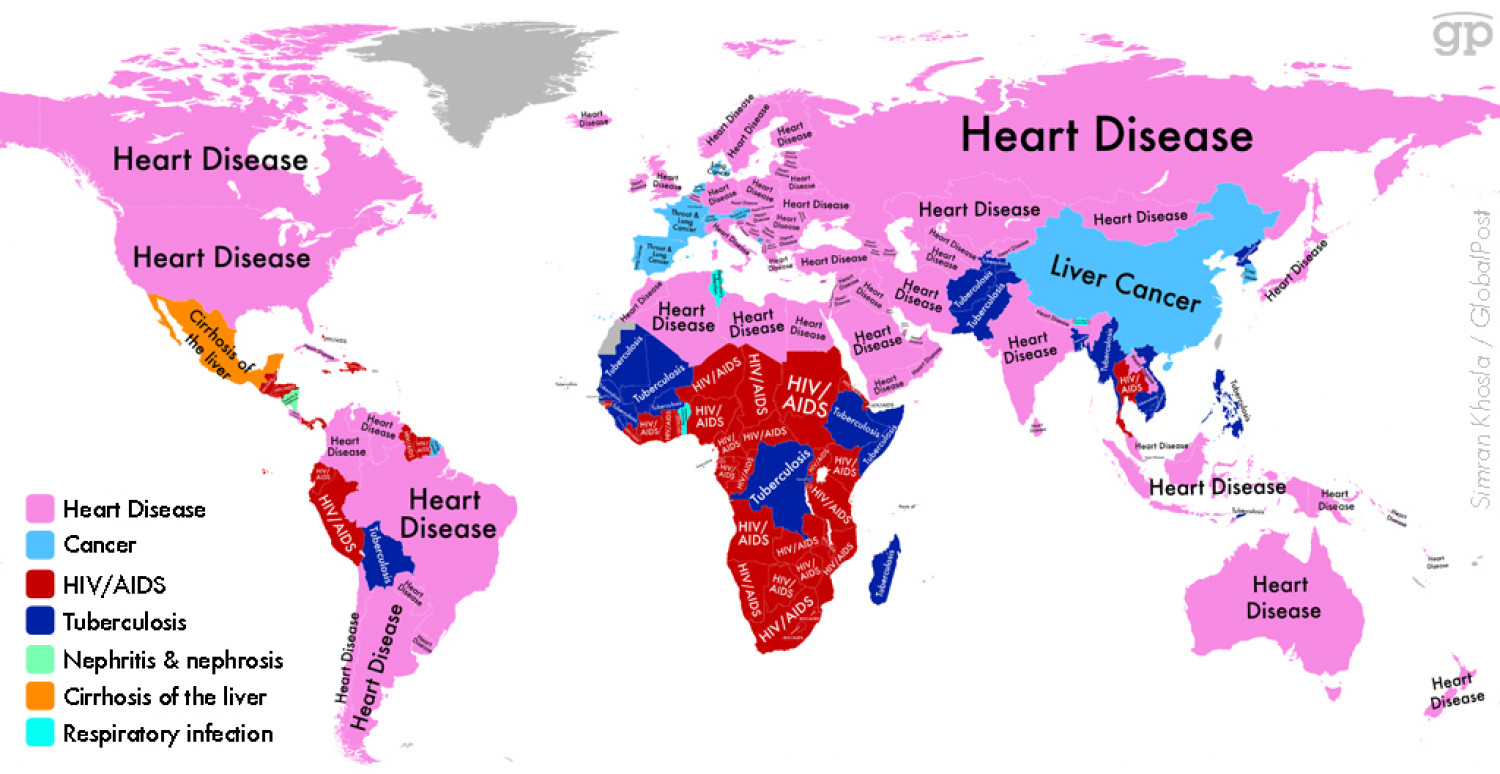 Map of Disease with the Highest Death Rate  Infographic