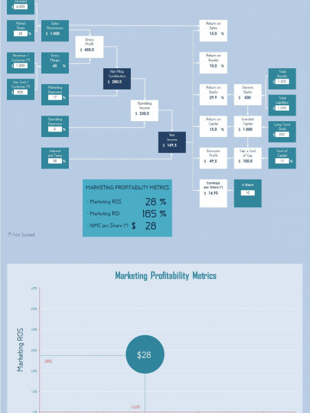 Market-Based Management & Financial Performance (by Adrián Chiogna)- Infographic