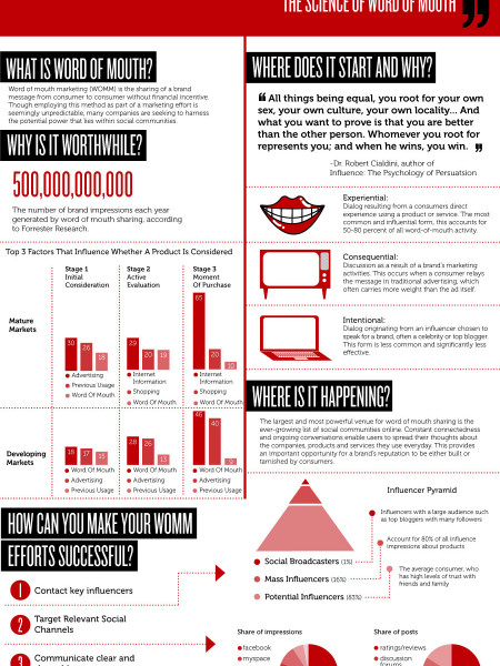 Marketing with the Masses the Science of Word of Mouth Infographic
