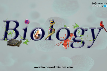 Master The Skills Of Biology As Career And Be Successful. Infographic