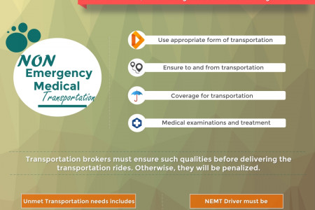 Medicaid Rules for NEMT Rides Infographic Infographic