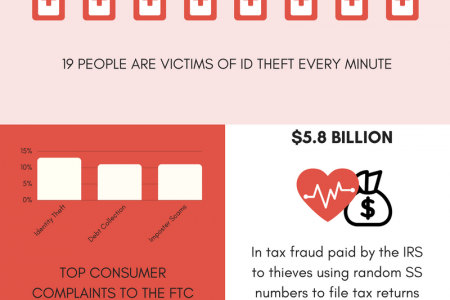 Medical Identity Theft  Infographic