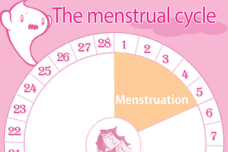 Menstruation and the Menstrual Cycle (Infographic) Infographic