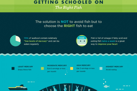 Mercury Rising: Enjoy Fish Without the Risk Infographic