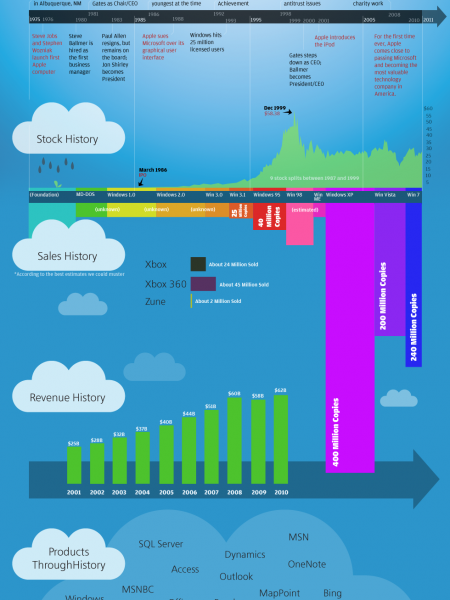 Microsoft: The Story Infographic
