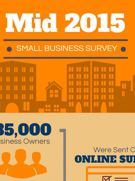 Mid-2015 Small Business Survey | Balboa Capital Infographic