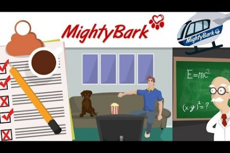 Explainer Video Mighty Bark Infographic