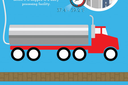 Milk: From Farm to Table Infographic