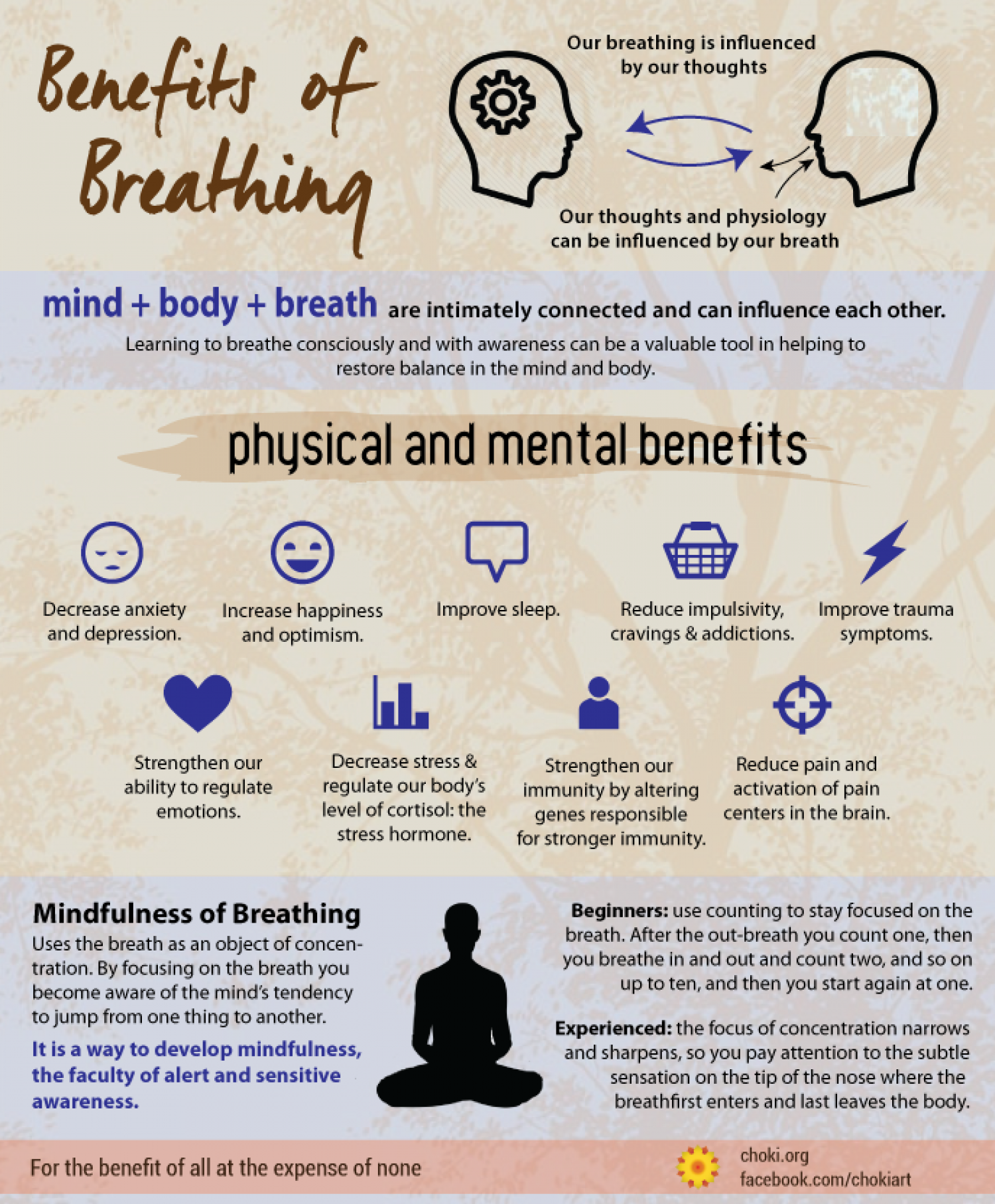 Mindfulness of Breathing Infographic