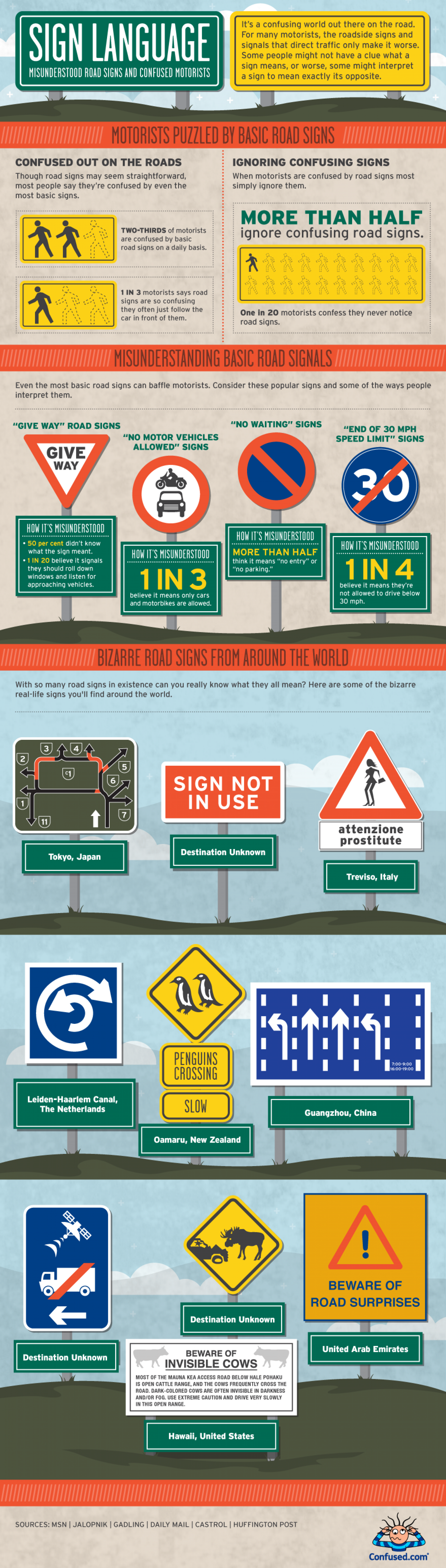 Misunderstood Road Signs and Confused Motorists Infographic