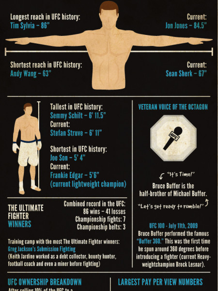Mixed Martial Arts Infographic