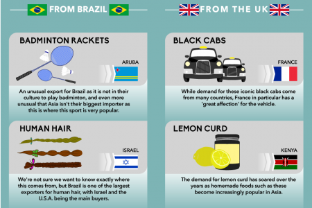 Most Bizarre Exports Infographic