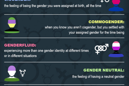 Most Common Gender Identities Explained Infographic