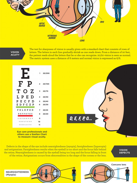 Mother Nature's Pop Science Guide to The Human Eye - Part One Infographic