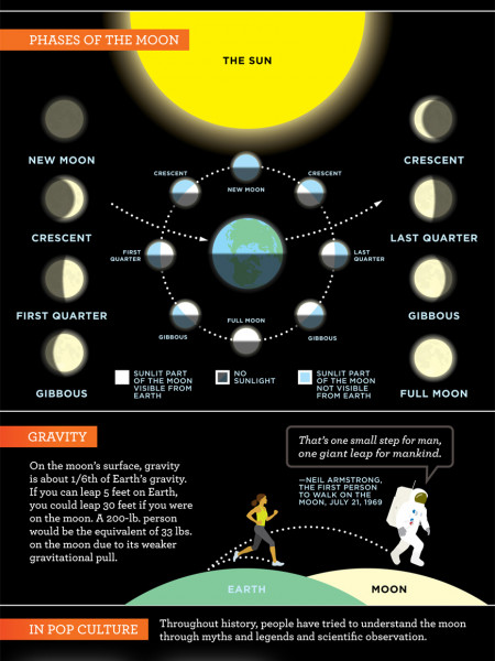 Mother Nature's Pop Science Guide to the Moon Infographic