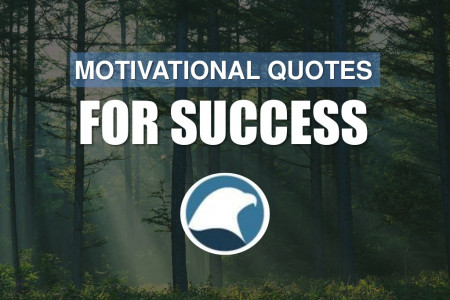 Motivational Quotes For Success Infographic