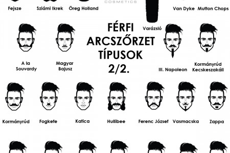 moustache and beard / Férfi arcszőrzet  Infographic