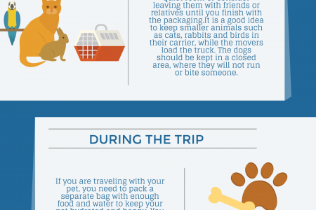 Moving Tips when Relocating with Pets Infographic