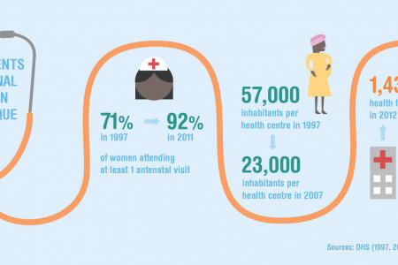Improvements in maternal health in Mozambique Infographic