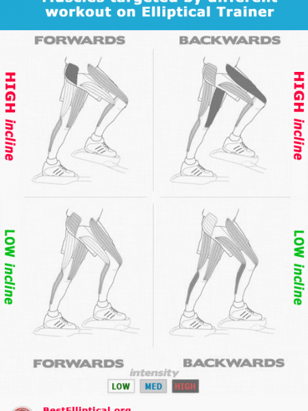 Mucsles targets on different intensity on Elliptical Trainer Infographic