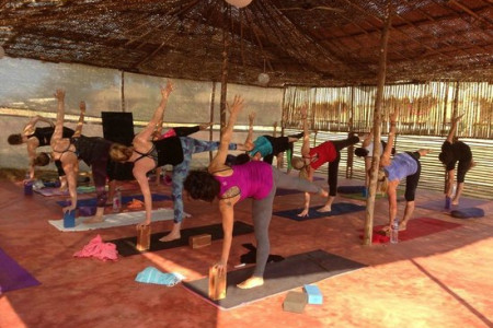 Multi Style Yoga Teacher Training Course - India  Infographic