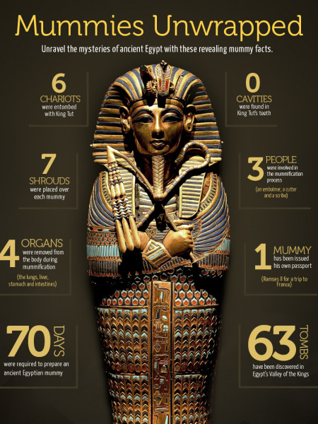 Mummies Unwrapped  Infographic