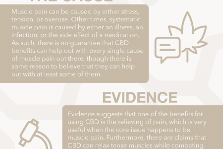 Muscle Pain: CBD can Help! Infographic