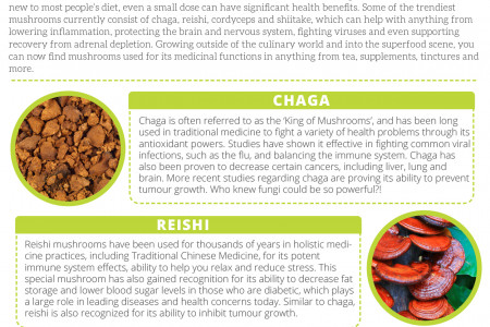 Mushrooms: The Stress-Busting Superfood Infographic