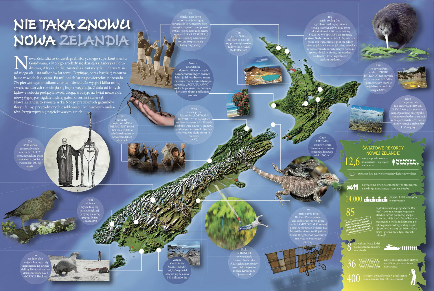 Mysteries and curiosities of New Zealand Infographic