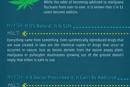 Myths About Drug Abuse And Addiction Infographic