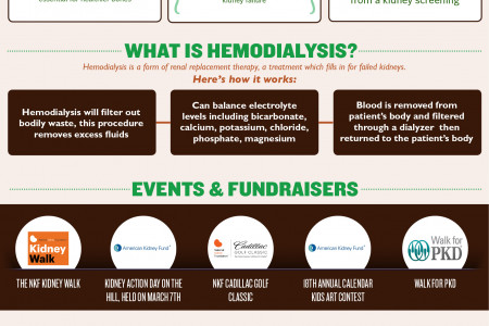 National Kidney Awareness Month Infographic